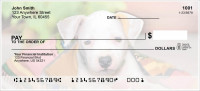 Pit Bull Pups Personal Checks