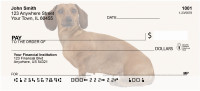 Dachshunds Personal Checks