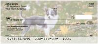 Charming Chihuahua Personal Checks