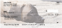 Bullmastiff Personal Checks | DOG-97