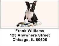 Boston Terrier Puppies Address Labels