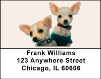 More Chihuahuas Address Labels