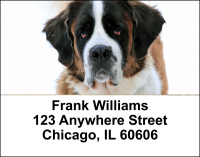 Saint Bernard Address Labels