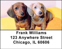 Dachshund Puppies Address Labels