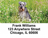 Schnauzers Address Labels