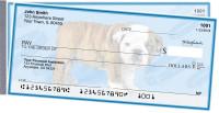 Bulldog Pups Keith Kimberlin Side Tear Checks
