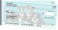 Boston Terrier Pups Keith Kimberlin Side Tear Checks