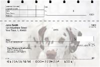 Dalmatians Top Stub Checks