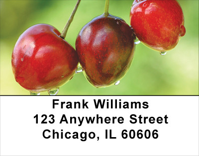 Cherries Address Labels | LBFOD-35