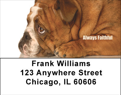 Bulldogs With Marine Attitude Address Labels | LBMIL-32
