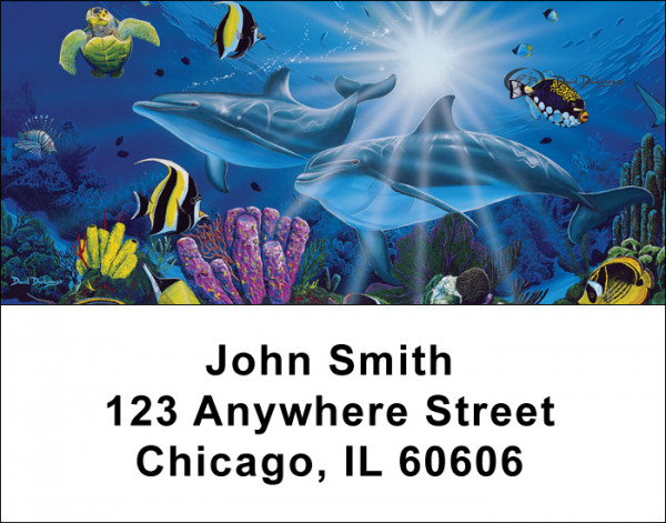 Dolphins Address Labels by David Dunleavy