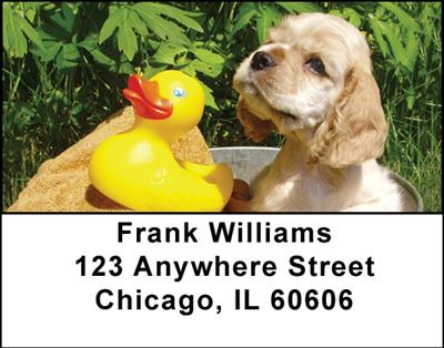 Cute Cocker Spaniels Address Labels