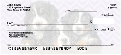 Bernese Mountain Dog Pups Personal Checks