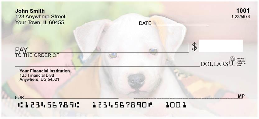 Pit Bull Pups Checks