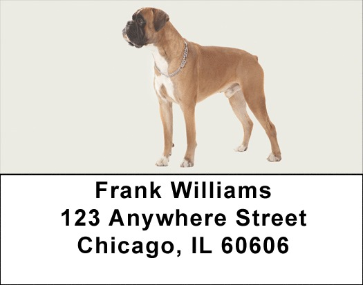 Boxer Address Labels