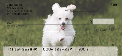 Mini Poodle Personal Checks