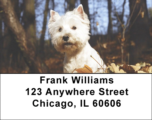 West Highland White Terrier Address Labels