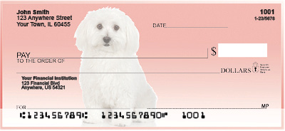 Bichon Frise on Pink Checks
