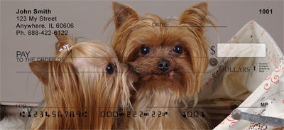 Yorkshire Terrier Puppies Personal Checks