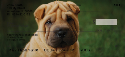 Shar Pei Personal Checks