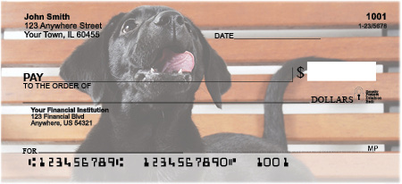 Black Lab Puppies Personal Checks