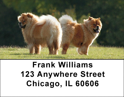 Chow Chow Address Labels