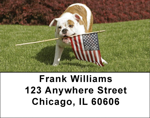 Romping English Bulldogs  Address Labels