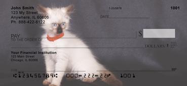 Birman Kittens Personal Checks