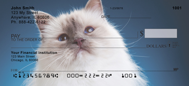 Berman Kittens Personal Checks