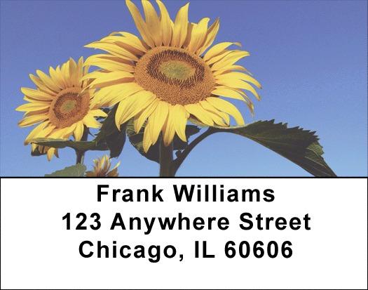 Joyous Sunflowers Address Labels