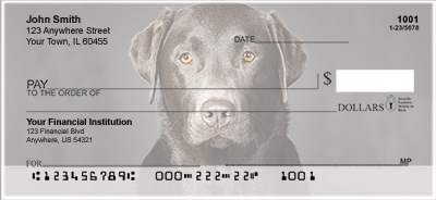 Black Labradors Personal Checks
