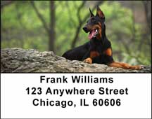 Dobermans Address Labels