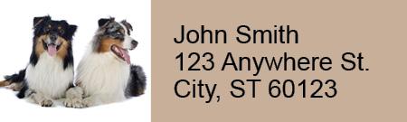 Australian Shepherd Rectangle Address Labels