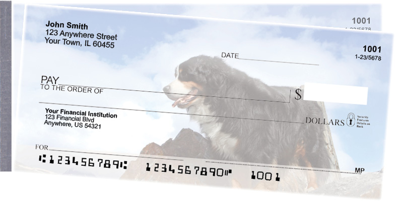 Bernese Mountain Dog Side Tear Checks