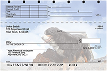 Bernese Mountain Dog Top Stub Checks