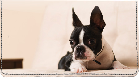 Boston Terrier Leather Cover