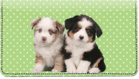 Australian Shepherd Pups Keith