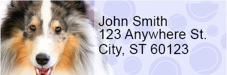Collie Pups Keith Kimberlin Address Labels