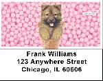 Coney Pups Keith Kimberlin Address Labels