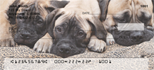 Bullmastiff Personal Checks