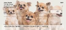 Lovable Chihuahuas Personal Checks