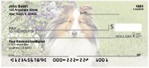 Shetland Sheepdog Checks