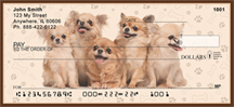 Chihuahua Puppies Personal Checks