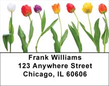 Spring Line Up Address Labels