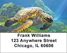 Swimming Sea Turtles Address Labels