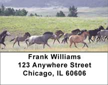 Spanish Mustang Address Labels