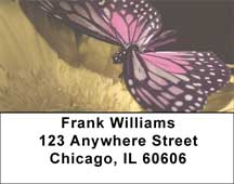 Butterfly Perspective  Address Labels
