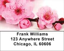 Blossoms In Pink and Blue Address Labels