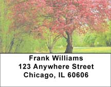 Trees In Springtime Address Labels