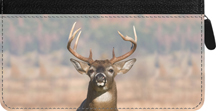 Big Horned Buck Zippered Checkbook Cover